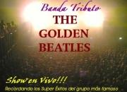 Show en vivo!!!  espectáculo de primer nivel con la banda tributo the golden beatles
