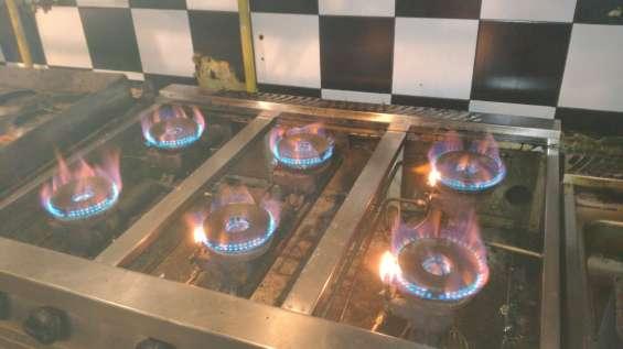 Service pasteras a gas